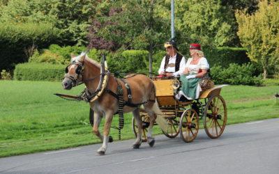 6 oktober: Koetsentocht Van Zwitserse chaise tot Jan Plezier